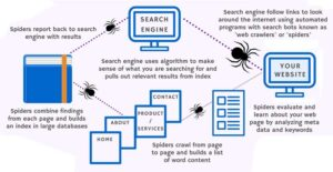 How search engines operate