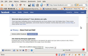 """Screenshot of Facebook > News Feed and Wall Privacy"" by Frozenmouse is licensed with CC BY-NC-SA 2.0. To view a copy of this license, visit https://creativecommons.org/licenses/by-nc-sa/2.0/"