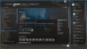 The Steam User Interface Beta in 2010 : from InsaneNutter on Digiex forums